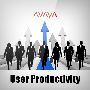 Avaya User Productivity Licences
